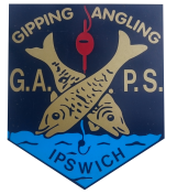 G.A.P.S. logo today