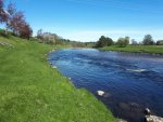 The Cairnton beat, the home of Salmon fishing on the River Dee in Aberdeenshire, Scotland.